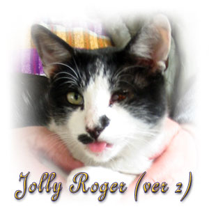 The Digglers' Cats ~ Jolly Roger (ver 2)