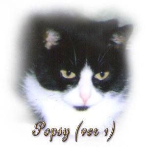 The Digglers' Cat ~ Popsy (1)