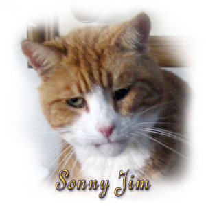 The Digglers' Cat ~ Sonny Jim